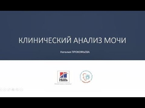 Вебинар №11 школы НЕФРОУРОВЕТ Клинический анализ мочи Лектор Наталия Прокофьева