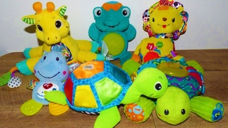 Soft Toys For Babies. Vtech , Baby Einstein ,Little tikes giraffe, Lamaze