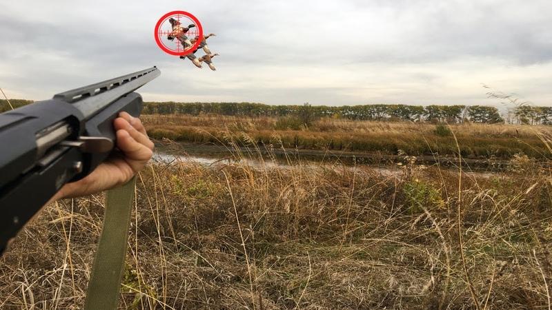 Охота на Утку в Болотах Охота 2020 Хорошая вечерка охоты на утку МР155