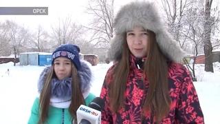 В Орске лабрадор покусал двух школьниц Сюжет