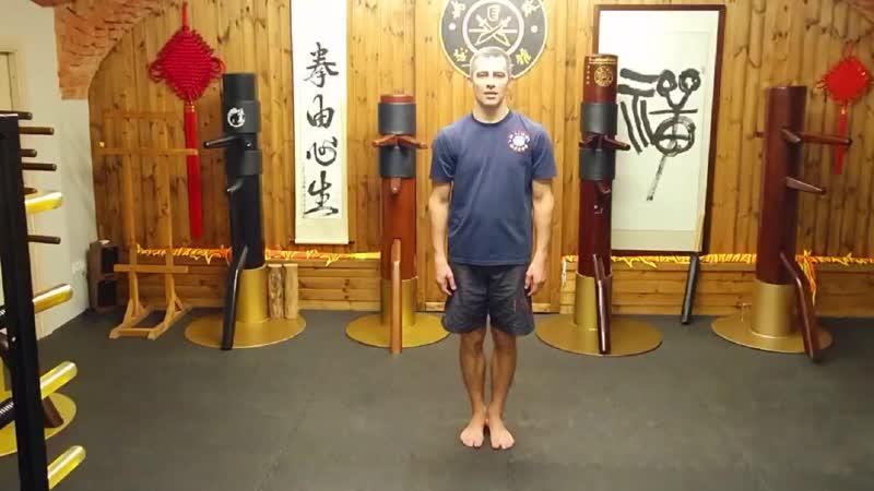 Yiu's snake style Wing Tsun faction Змеиный стиль Вин Чунь клана Яо Yiuchoi Yiukay Wing Chun Foshan