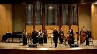Струнная группа Сочинского симфонического оркестра в проекте «Музыкальная радуга on-line»