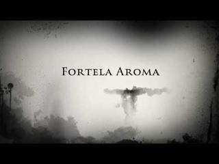 ШОК! Вся правда о сухом тумане Fortela Aroma!