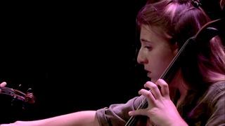 Felix Mendelssohn : Trio pour piano et cordes n° 2 en ut mineur op. 66 - I. Allegro energico e co...