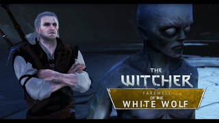 The Witcher: Farewell of the White Wolf - Gameplay 2