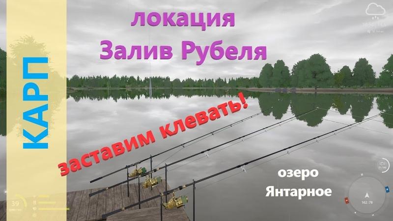 Русская рыбалка 4 озеро Янтарное Как заставить карпа клевать