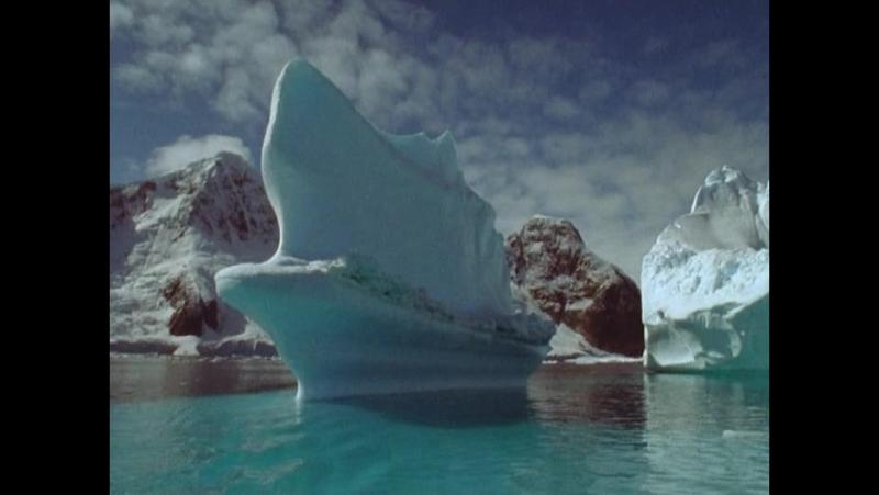 BBC: Голубая планета. Фильм четвертый, Замёрзшие моря