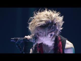 Acid Black Cherry -  (5th Anniversary Live Erect)
