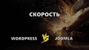 Joomla или Wordpress что быстрее (Александр Куртеев)