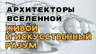 Различие между живым и машинным разумом | Откуда берутся эмоции  Разговор с Архитекторами Вселенной.