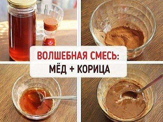 Мед и корица - идеальное сочетание от многих заболеваний!