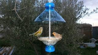 Como Hacer un Comedero para Pajaros / Comedero Aves