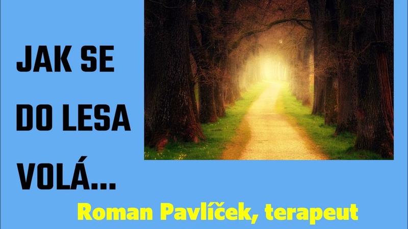 Jak se do lesa volá článek Romana Pavlíčka