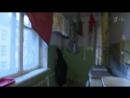 Мужское - Женское - Переходный возраст.  Выпуск от 16.01.2018