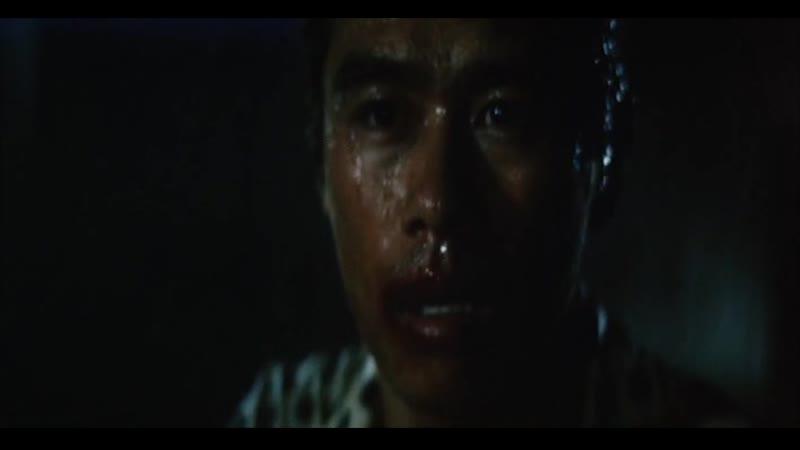 Butoken Moko gekisatsu Which is Stronger Karate or Tiger 1976