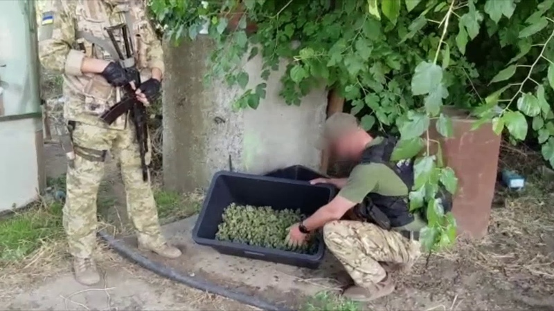 Прикордонники спільно з поліцейськими виявили поблизу міста Ізмаїл одну з найбільших за останні роки