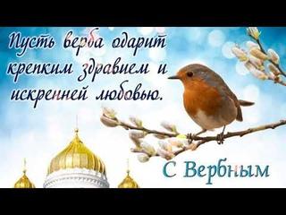 Вербное Воскресенье поздравление! Музыкальная открытка с Вербным Воскресеньем !