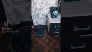 яндекс Алиса и робот пылесос в одной территории