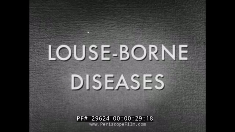 LOUSE BORNE DISEASES WWII PERSONAL HYGIENE TRAINING FILM FIGHTING LICE 29624
