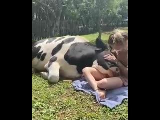 все мы любим ласку, и животные не исключение☝