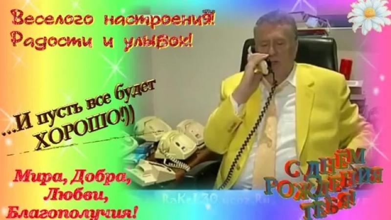 Жириновский открытки