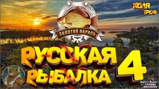 СТРИМ 🐻 ✅ Русская рыбалка 4 🏆турнир 2й отборочный/ Розыгрыш премов (неделя)) рр4 топ игра!