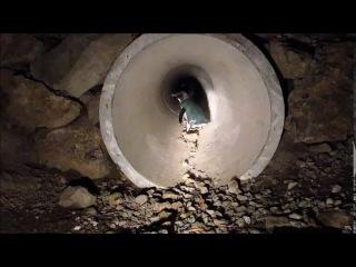 туннель для пингвинов