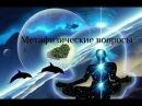 Метафизические вопросы Балсекар Рамеш Сознание говорит