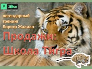 Продажи: Школа Тигра. Обновленный Легендарный Тренинг Бориса Жалило на Zillion