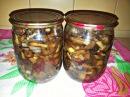 Маринованные грибы на зиму Хороший рецепт маринованных опят