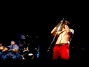 Red Hot Chili Peppers - Don't Forget Me (live at Slane Castle 2003)