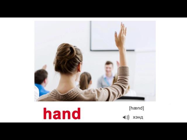 АНГЛИЙСКИЙ ЯЗЫК для детей АНГЛИЙСКИЕ СЛОВА Body parts ЧАСТИ ТЕЛА по методике Домана