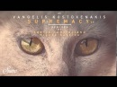 Vangelis Kostoxenakis - 100 Voices (Original Mix) [Suara]