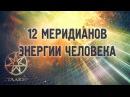 12 меридианов энергии человека