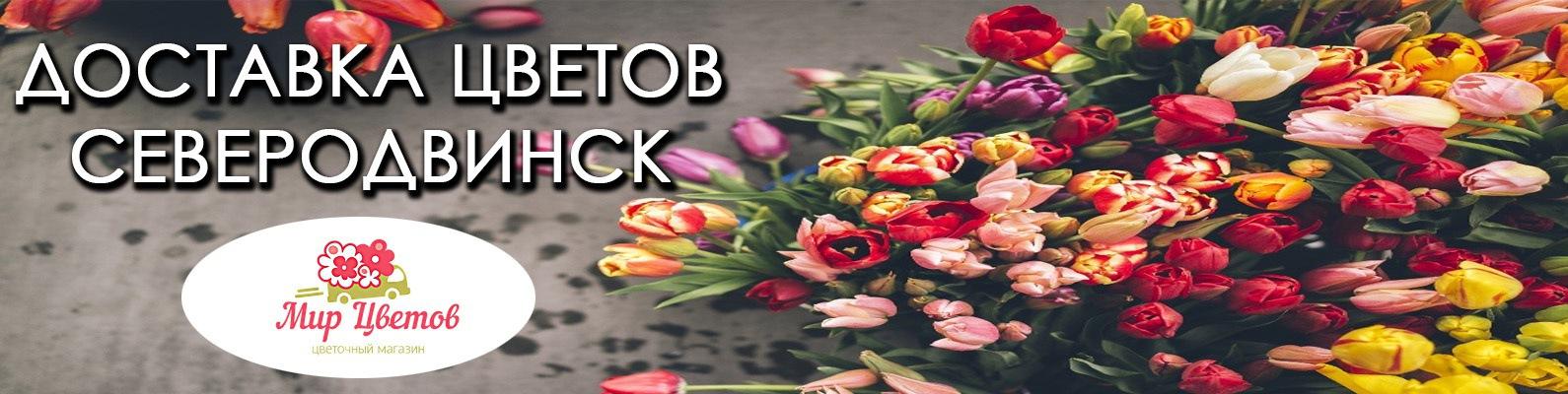 Доставка цветов северодвинск круглосуточно, розы цветы купить оптом спб