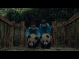 Панды / Pandas.Тизер-трейлер (2018) [1080p]