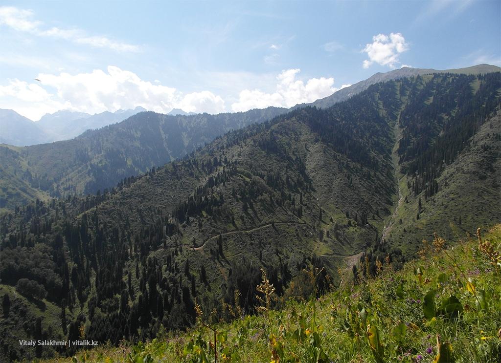 Гора напротив дороги на Кок-Жайляу, Алматы 2018