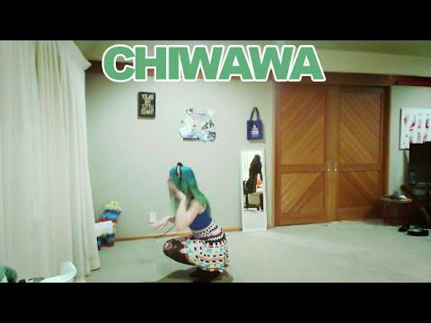 Chiwawa Wanko Ni Mero Just Dance 2016