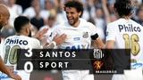 Santos 3 x 0 Sport - Melhores Momentos (HD 60fps) Brasileir
