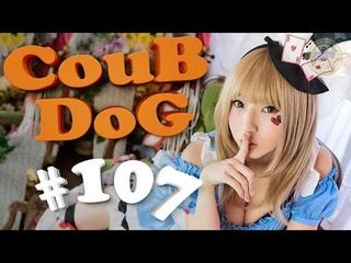 BEST COUB DOG #107 | лучшие приколы за Октябрь 2018 / mycoubs / аниме / mega coub / моменты / funny