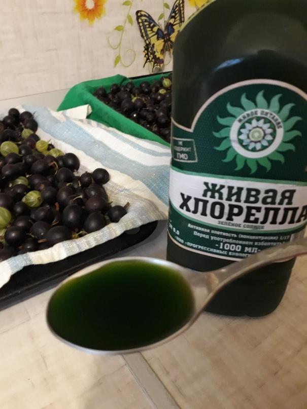 Ольга Якушкина | Челябинск