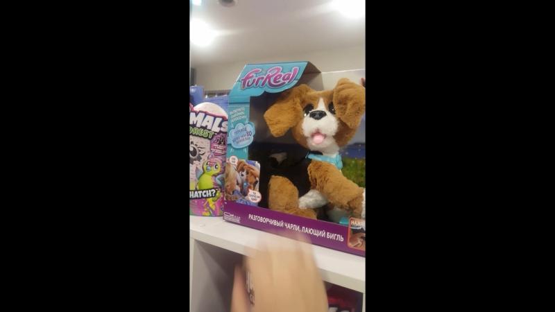 Разговорчивый Чарли лающий бигль FurReal Friends от Hasbro1