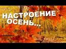 Пусть осенью сбудутся мечты Настроение осень