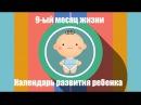 Девятый месяц жизни Календарь развития ребенка