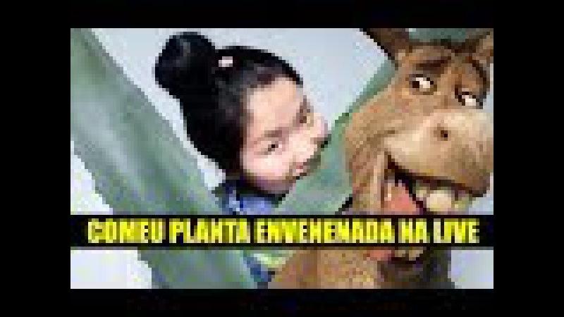 Chinesa come planta envenedada em live stream. Não seje burro seu burro! Just fun show 6 de julho