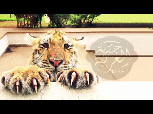 Paranda Kaur B Cricced MCU Punjabi Remix