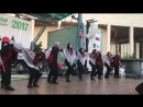 Houston Palestine Festival 2017 Dabke