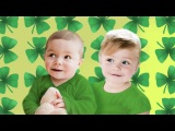 Do You Know What a Shamrock Is |  Kids Songs | St Patricks Day for Kids | The  Kiboomers