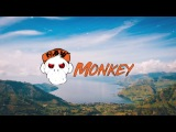 Niels de Vries - 12 Inch (Raw Hardstyle Edit By Maui &amp Hilkie) MONKEY TEMPO