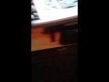 Live вич екатерина шишияну болна вич гуляит по воскресенск пасеолак медветка  адрес юбилеиная 6